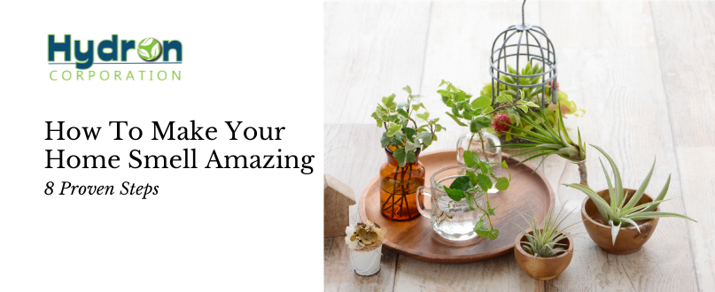 8 Proven Ideas To Make Your Home Smell Amazing